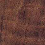 Black Walnut (Silkwood)